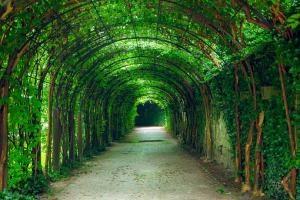 Bezpieczne używanie środków do ochrony roślin