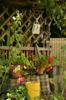 Jak wybrać firmę, która zaprojektuje nasz ogród